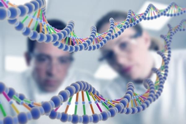 Dịch vụ thám tử giám định ADN TPHCM