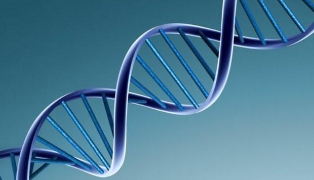 cong ty dich vu tham tu giam dinh ADN xac minh nhan than quan 7 TPHCM