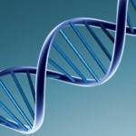 Công ty dịch vụ thám tử giám định ADN xác minh nhân thân quận 7 TPHCM