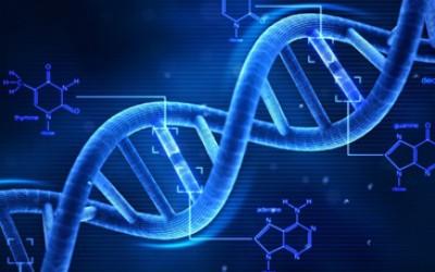 Dịch vụ giám định ADN