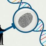 Công ty dịch vụ thám tử giám định ADN xác minh nhân thân quận 8 TPHCM